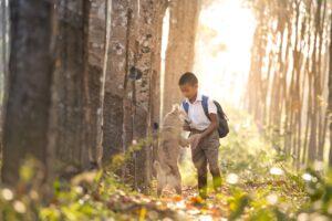 Benefits of having a dog